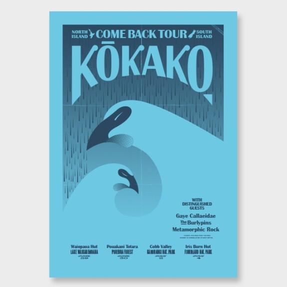 kokako-come-back-north-hero