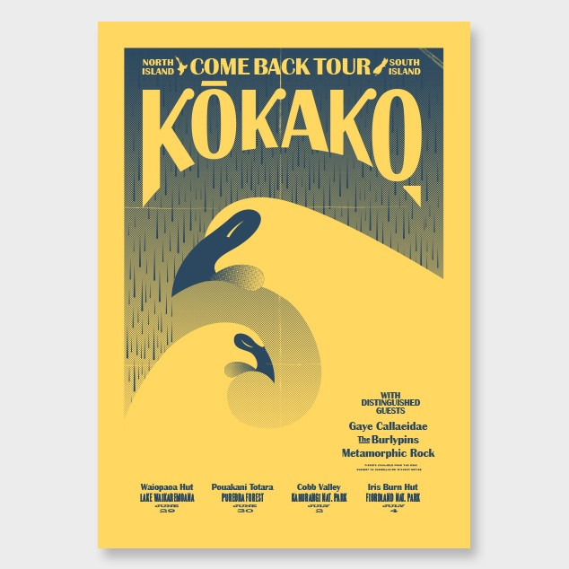 kokako-come-back-tour-south-hero